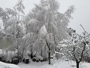 Winter in Norway. Picture: Jaziar Radianti